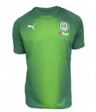 Stadium T-Shirt  PUMA 18/19  Junior