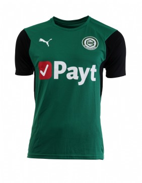 Trainingsshirt Groen PUMA 18/19 Junior